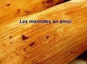 Tamales mole rojo recette mexicaine marmites emoi