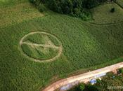 Etats-Unis quand Monsanto réécrit réalité