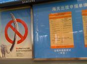 Cette Chine vole secours grandes causes