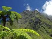 L'île Réunion, candidate l'UNESCO