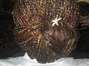 coiffures rajouts