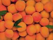 Financier abricots