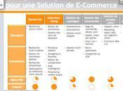 Solutions E-Commerce quels choix technologiques pour meilleure productivité
