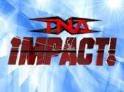 Impact Juillet 2010 Résultats
