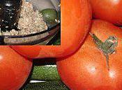 mange quoi demain? tomates courgettes farcies