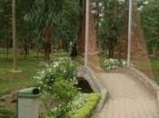 Yaoundé Bois Sainte Anastasie Trois millions facture impayée