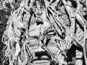 Archéologues Angkor musée Cernuschi.. autre temps..