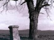 Bernard Plossu: éloges paysage français Musée Beaux-Arts Carcassonne (11)