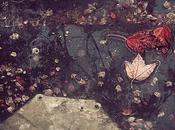 pluie, Emile Verhaeren (1855-1916) Longue comme fils...
