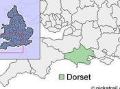 Grande-Bretagne cygnes morts porteurs virus H5N1