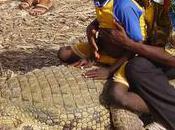crocodiles sacrés