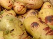 portraits pommes terre