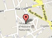 Restaurant Montesquieu 44000 Nantes