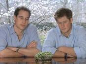 Prince Harry Plus stylé frère William