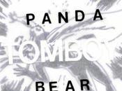 Panda Bear 'Tomboy'