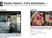 Suivez-moi Flickr