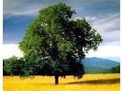 vidéo jour Peut-on donner prix biodiversité
