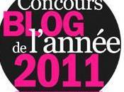 Mademoiselle Futile…Blog L'année 2011?