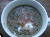 Velouté d'endives crevettes grises