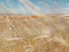 Itinéraires photographes Voyageurs 2011