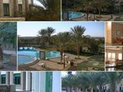 voyage dans Tunisien
