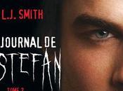 Journal Stefan Kevin Williamson