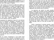 """livre d'or plongée"""" Jacques Dumas (11/1983) éditions Glénat (2/2)"""