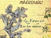 Sauvons remèdes base plantes