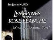 Benjamin Murcy, auteur Imaginaire