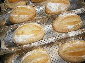 Petits pains levain