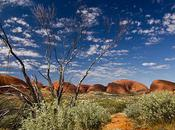 Dans l'Outback long Stuart