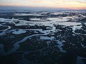 après: a-t-il vraiment nettoyé marée noire golfe Mexique?