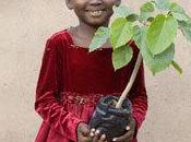 Tout monde plante arbre avec fondation Yves Rocher