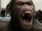 Planète singes origines