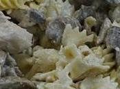 pates poulet champignons