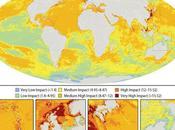 Carte pollution océans