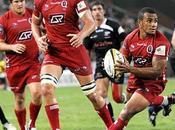 Super Rugby Queenland Reds sacrés