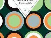 Rosa Candida Audur OLAFSDOTTIR