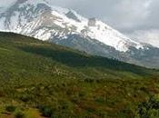 parc national Chréa