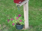 boites lettres ressemblent leurs maîtres!