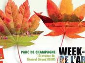 VILLE REIMS Week-end l'Arbre Parc Champagne