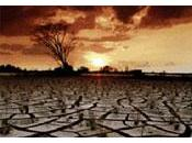millions d'hectares terres agricoles accaparées 2009