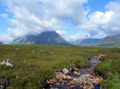 West Highland gros morceau, étape