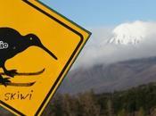 Nouvelle-Zélande-France vaches Kiwis