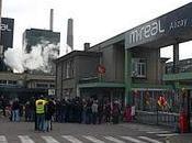 M-Real portes ouvertes samedi octobre