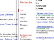 HOWTO: échapper censure anti-piratage Google