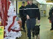 vaste opération gendarmerie dans Manche