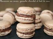 Macarons cacao ganache lait coco chocolat