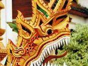 Janvier 2012, débute nouvel chinois……