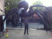 araignée géante gonflable pour Halloween